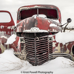 Old & Weathered