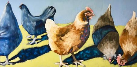 Blue Ledge Farm Hens