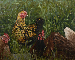 Hens in the Grass