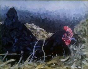 Black Hen in the Hay