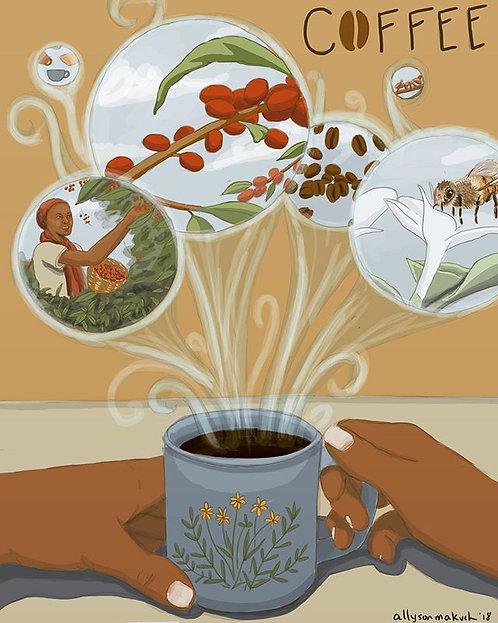 Coffee Socioecology