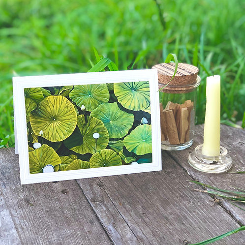 Set of 5 Lotus in the Dry Season Art Cards