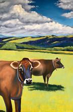 Butterworks Farm Heifers