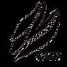 LACKロゴ(黒).png