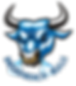 Bulls-logo2.png