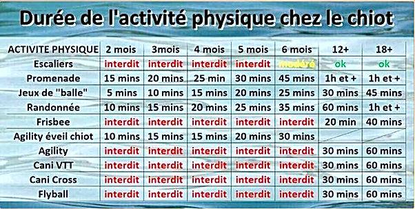temps exercies_edited.jpg