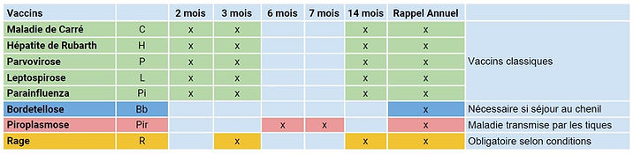 vaccin_chien (1).jpg