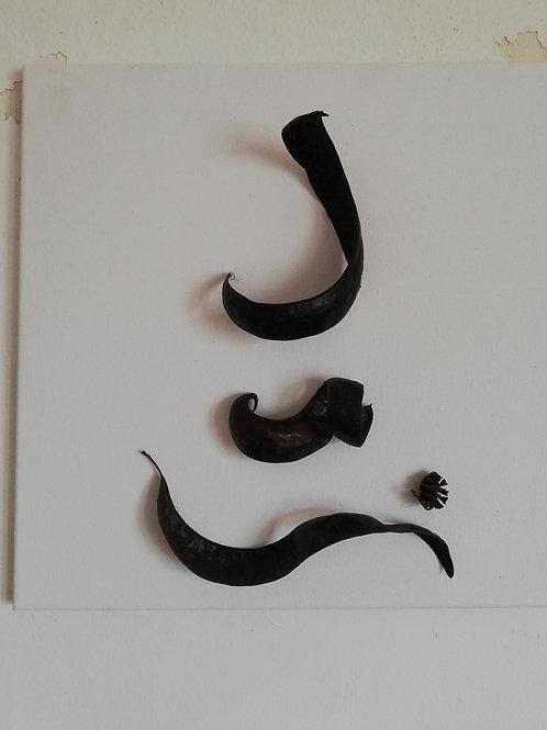 Nature Calligraphy