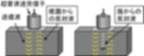 2_脳の聴覚情報処理を利用した超音波検査.jpg