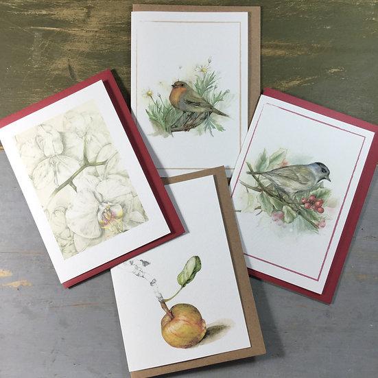 Set di quattro cartoline vari soggetti naturalistici
