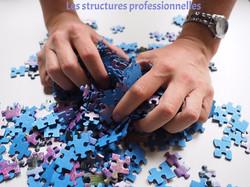 Les structures professionnelles