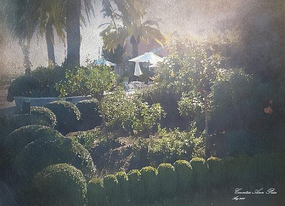 Formal Garden Delight Canvas