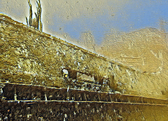 Antilla Wreckage Print Canvas
