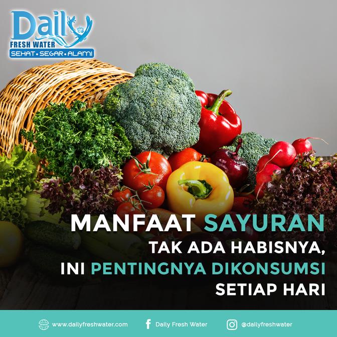 Manfaat Sayuran tak ada habisnya ini Pentingnya di konsumsi Setiap Hari