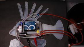 Κατασκεύασαν για πρώτη φορά ρομποτικό ψάρι που κινείται με συνθετικό αίμα