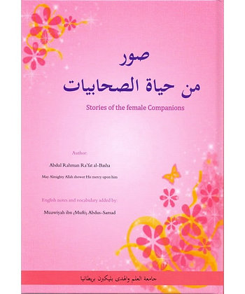 Stories of the female companions