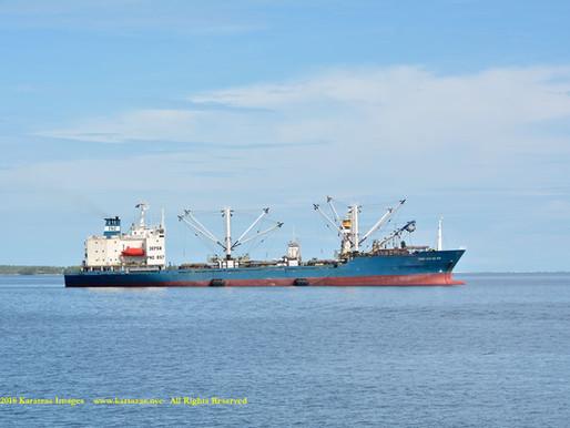 Tuna Trans-shipment Operations in Majuro Lagoon, Marshall Islands