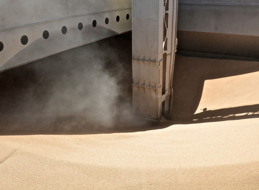 Grains & Oilseeds and Marine Transport Thereof: Definitions, Terms and Terminology
