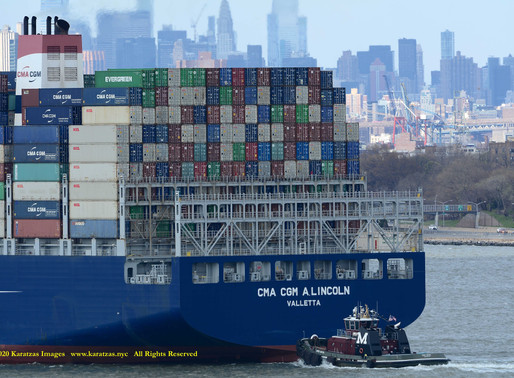 COVID-19: Shipping Industry's Uncharted Course Facing A Novel, Systemic and Long-tail Risk