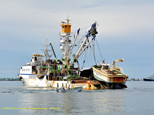 Fishy business: an article from the Financial Times on Taiwan's fishing industry