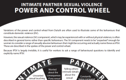 Intimate Partner Sexual Violence