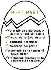 post part.png