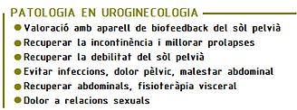 patologia en uroginecologia.png