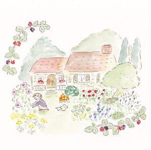 花とハーブのお庭