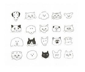 DOGS&CATS
