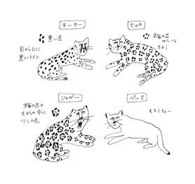 ヒョウとかジャガーとか・・