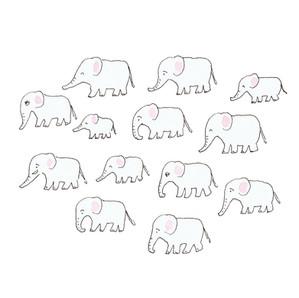 象ファミリー移動中