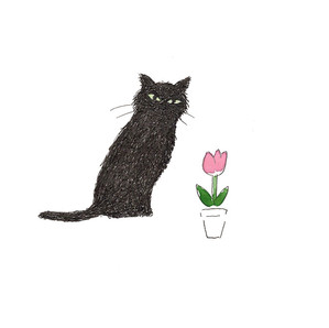 チューリップと黒猫