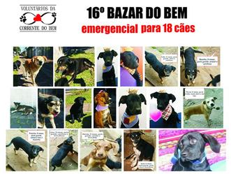 Voluntários da Corrente do Bem promovem bazar em prol de cães abandonados