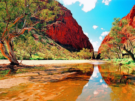 Top 5 Swimming Spots In Alice Springs