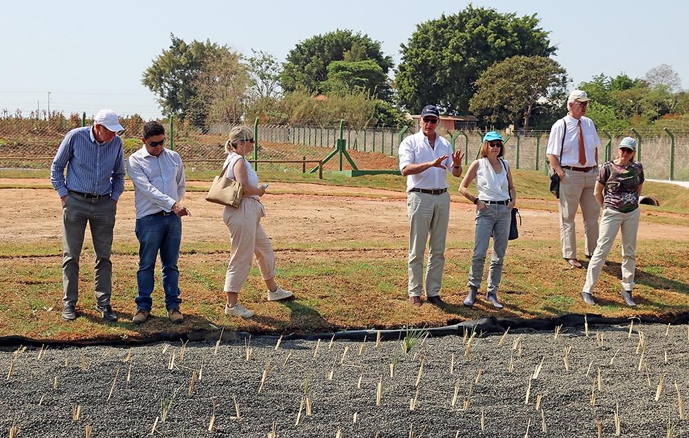 Cônsul-geral e agentes do Governo Holandês realizam visita técnica a Holambra - Jornal da Cidade - JC