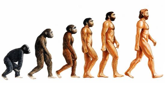 Homo sapiens, mas nem tanto