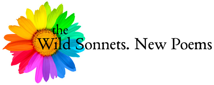 WildSonnet-WixBanner2018-NewPoems.jpg