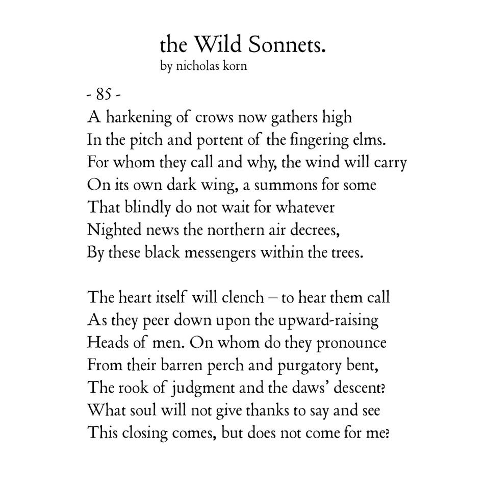 Wild Sonnet #85