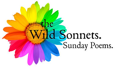 WildSonnet-SundaySignup.jpg