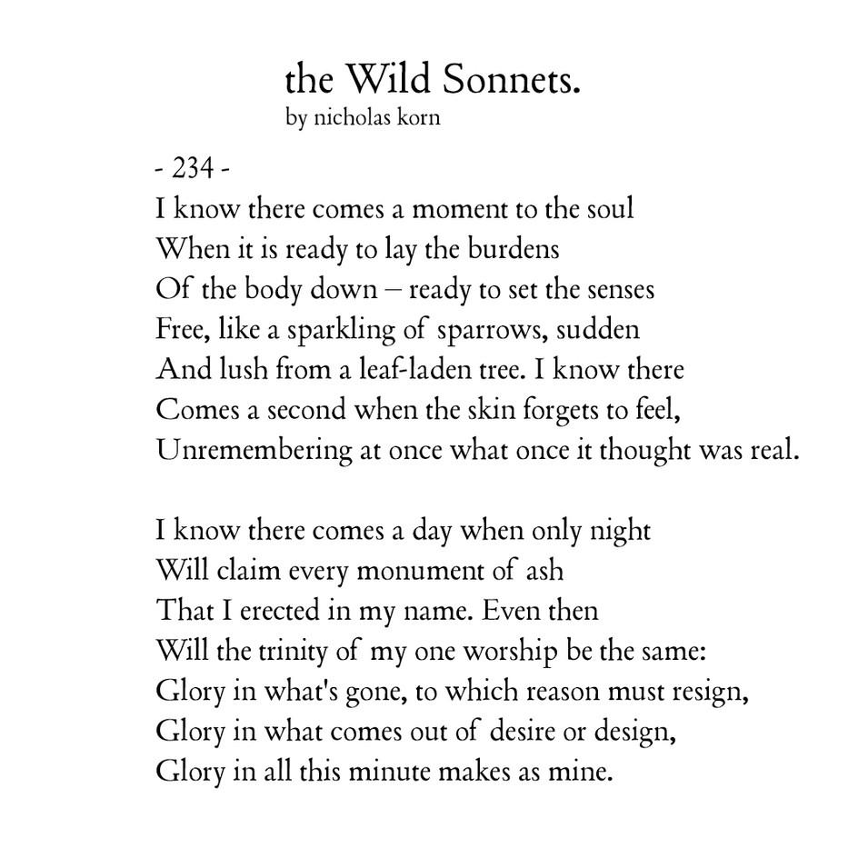 Wild Sonnet #234