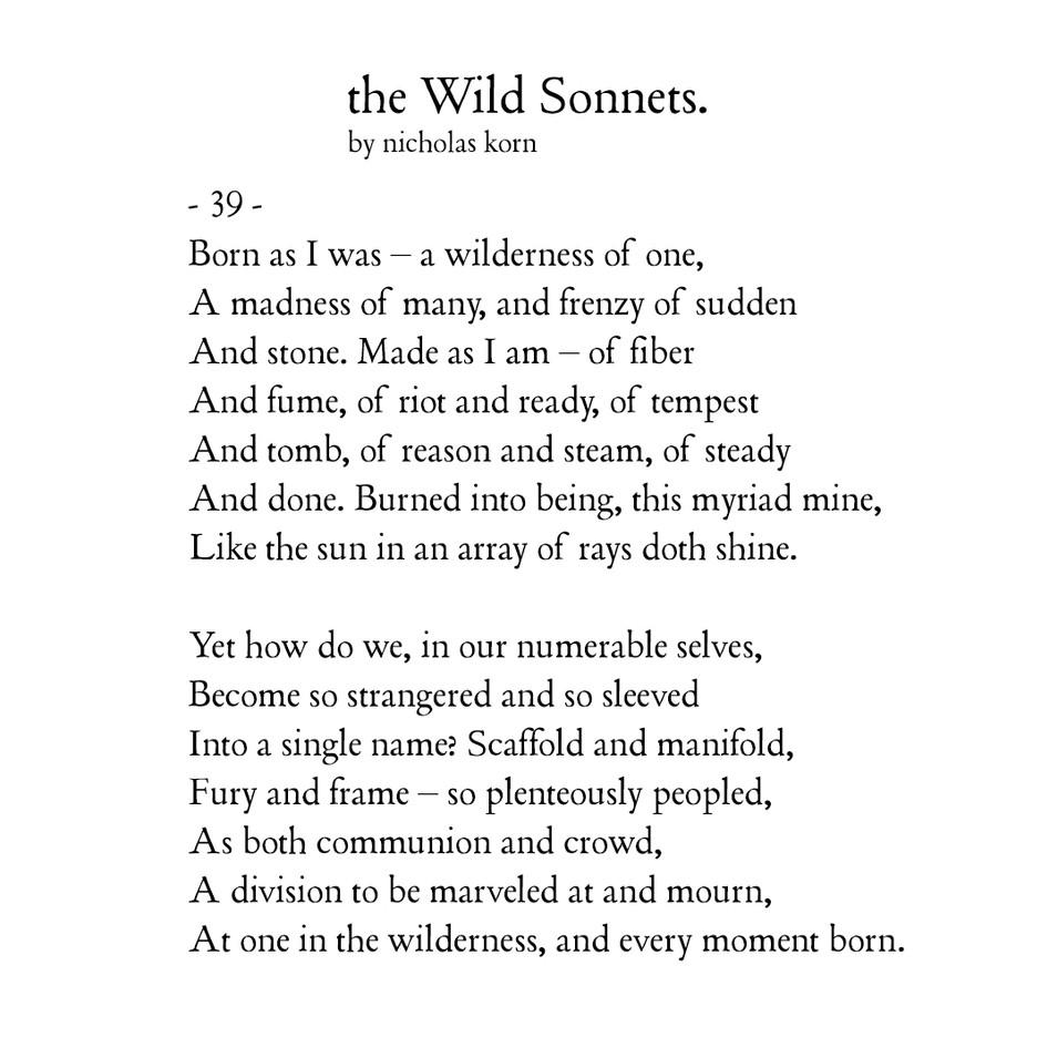 Wild Sonnet #39