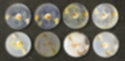 slime tests2.jpg