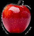 ASL-Apple-Logo.png