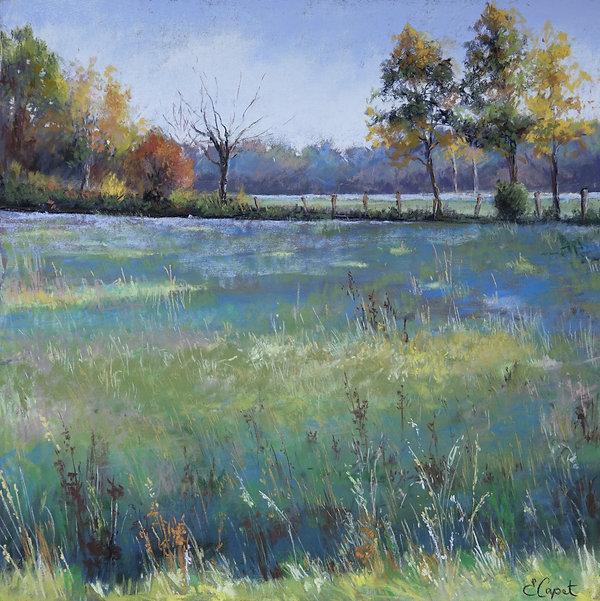 Emmanuelle Capet - Prairie calme 61x61.JPG