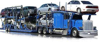 Shawn Ships Cars Reddit. Vice One Logistics. ShawnShipsCars. Car Shipping Guy. ShawnShipsCars. SeanShipsCars