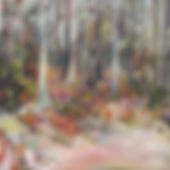 Woods in Dull 20x20inches.JPG
