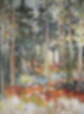 Pine Forest Dunkeld 30x40inches.jpg