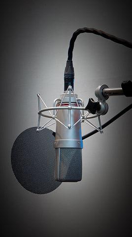 Studio X.1 Neumann Mic