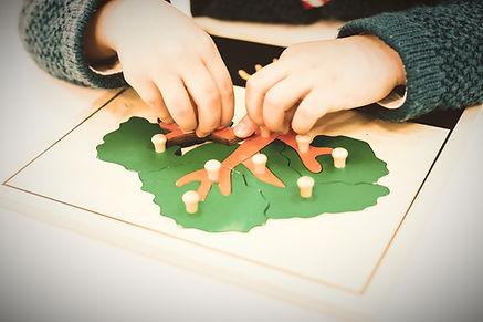 Montessori school, childcare, high school, elementary school