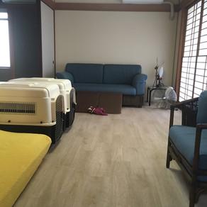 ロボフロアー施工いただきました✨|広島市A様邸|床リノベーション